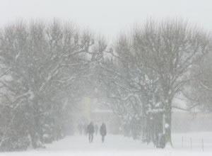 Tipos de clima, Frío