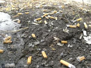 Muchas sustancias liquidas y sólidas pueden contaminar el suelo.