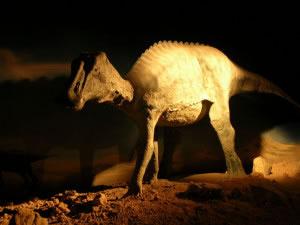 Durante el triásico, jurásico y cretáceo, existieron varios tipos distintos de dinosaurios, siendo los animales que dominaron el planta durante esos periodos de millones de años.
