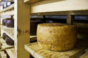 Queso artesanal en estante de madera