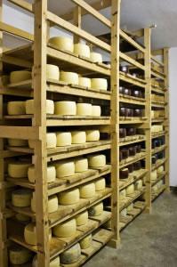 Bodega de quesos