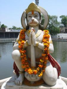 Mono dios hindú.