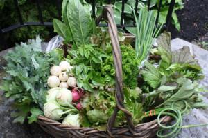 Canasta con tipos de verduras.