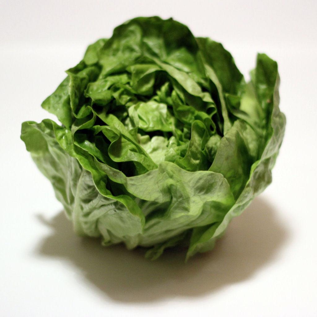 Tipos de Verduras   Tipos de