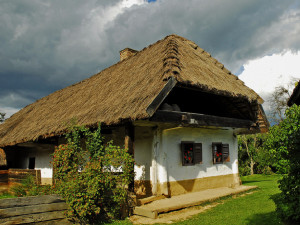 Casa con techo de paja.