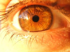 ojos color miel