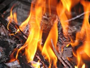 Madera quemándose como combustible para el fuego.