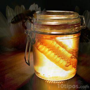 Tarro de miel un ejemplo de carbohidratos simples