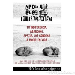 Cartel de conciencia animal