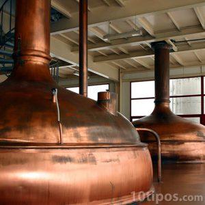 Proceso de fermentación de cerveza