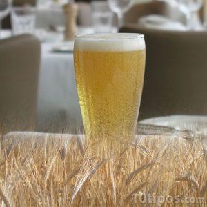cerveza clara hecha de trigo