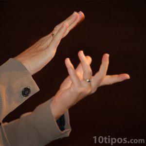 Comunicación de señas