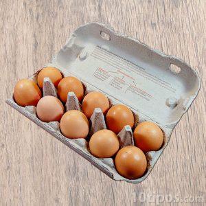 empaque de huevo hecho de cartón