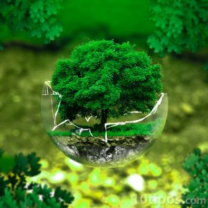 Naturaleza rota en una esfera