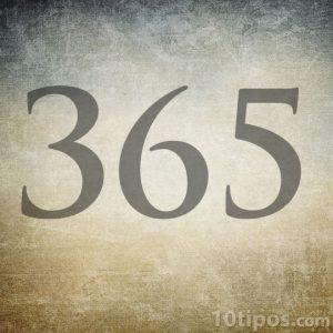 Número 365