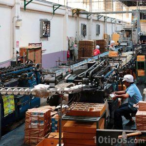 Línea de producción de una fabrica