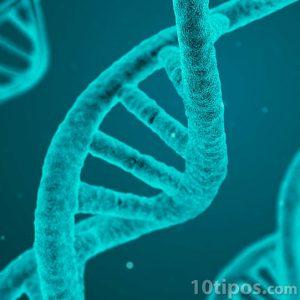 Cadena de ADN vista desde un microscopio