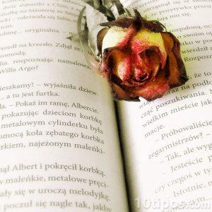 Libro con motivos románticos