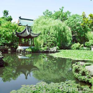 Jardín estilo japonés con estanque
