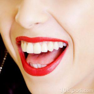 Boca abierta de mujer con los labios pintados