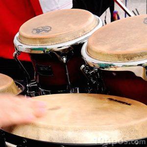 Instruments musicales que se tocan con la manos hechos con piel