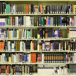 Libros catalogados en repisas