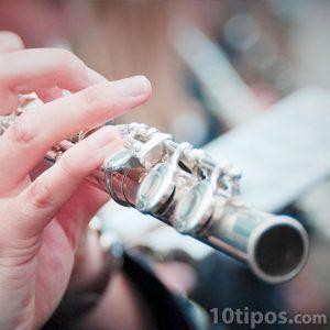Instrumento de viento que se toca soplando y con las de manos