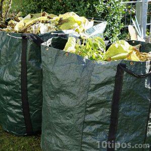 Basura biodegradable
