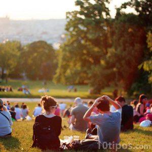 Día de campo en un parque