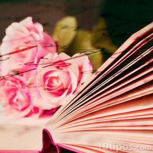 Lectura romantica para personas sensibles